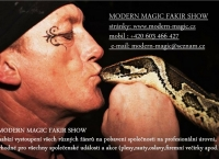 Modern Magic Fakir Show - Petr Braun -